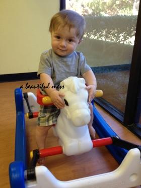 E riding horse
